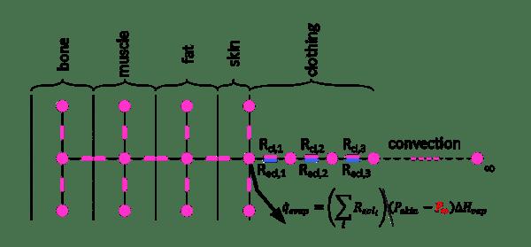 Basic Clothing Model Equation