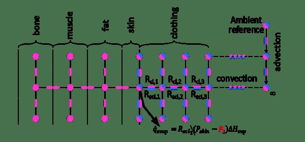 Advanced Clothing Model Equation