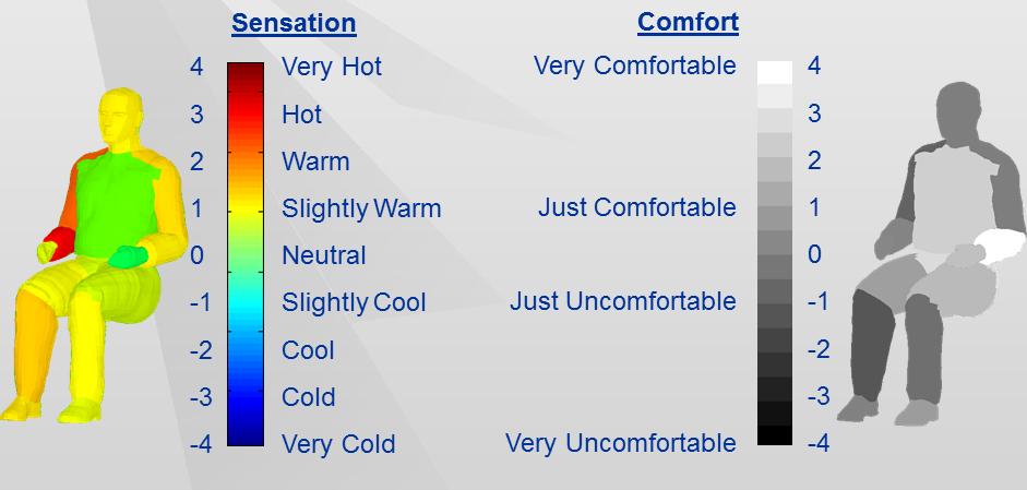 human thermal sensation and comfort.png